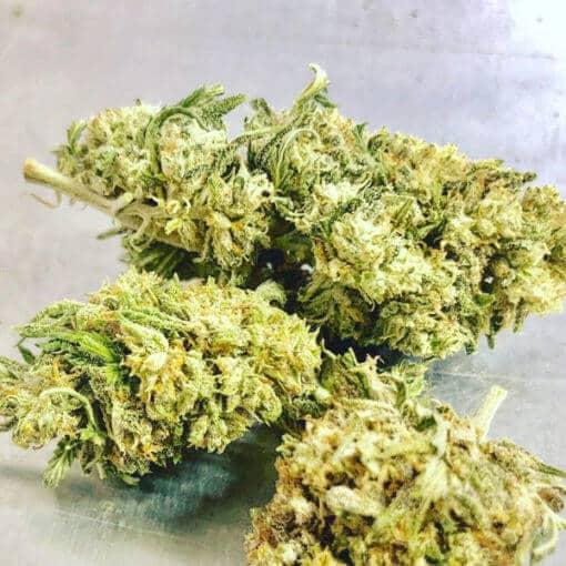 Jack Frost CBG Flower Buds