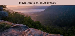 Is Kratom Legal In Arkansas?