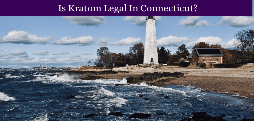 Is Kratom Legal In Connecticut?