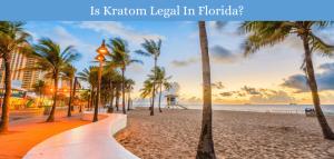 Is Kratom Legal In Florida?