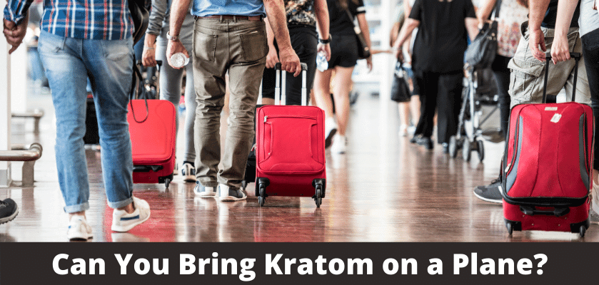Can You Bring Kratom on a Plane?