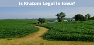 Is Kratom Legal In Iowa?