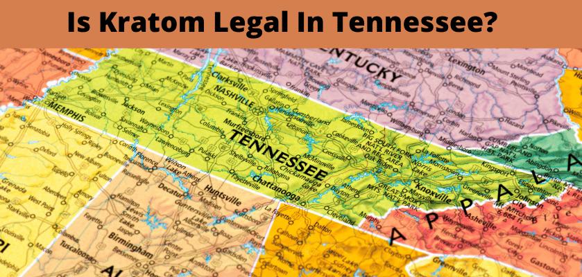 Is Kratom Legal In Tennessee?